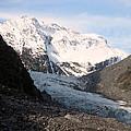 Fox Glacier by Rachael Shaw