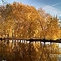 Fox River-jp2418 by Jean Plout