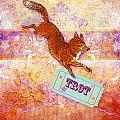Foxtrot by Aimee Stewart