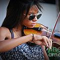 Foxy Fiddler