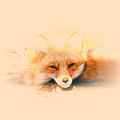 Foxy by Karol Livote