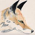 Foxy Lady by Stephanie Grant