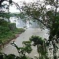 Foz Do Iguacu by Helena Wierzbicki