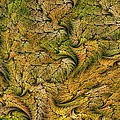 Fractal Leaf Mat-- 2 by Doug Morgan