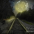 Fractal Moon by Melissa Messick