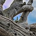 Framed Lighthouse by Robert Bales