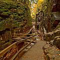 Franconia Notch Flume Gorge Boardwalk by Adam Jewell
