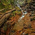 Franconia Notch Lush Greens And Rushing Waters by Adam Jewell