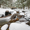 Franconia Notch State Park - White Mountains New Hampshire Usa - Flume Gorge by Erin Paul Donovan
