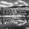 Franconia Ridge Reflection B And W by Shell Ette