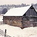 Fraser Valley Barn by Robert  Rodvik
