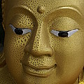 Freckled Gold Buddha by Gregory Smith