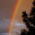 Free Rainbow 2 by Ben Upham III