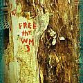 Free The West Memphis 3 by Joshua Brown