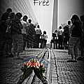 Freedom Is Not Free by Tina Meador