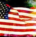 Freedom by Steven  Michael