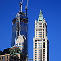 Freedom Tower And Woolworth Building by Frank Romeo