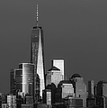 Freedom Tower Glow Bw by Susan Candelario