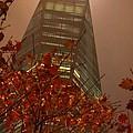 Freedom Tower Nyc by Jennifer Craft