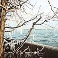Freezing Rain by Munir Alawi