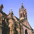 Freiburg Gothic  by Ted Pollard