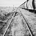 freight grain trucks on former canadian pacific railway now great sandhills railway through leader S by Joe Fox