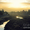 Fremont Dawn by Ellen Cotton