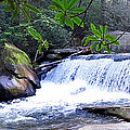 French Broad River Waterfall by Duane McCullough