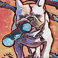 French Bulldog And Toy by Nadi Spencer