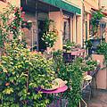 French Floral Shop by Jaroslav Frank