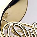 French Horn  by Jon Neidert