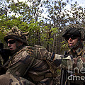 French Marines Scout Ahead Of A Patrol by Stocktrek Images
