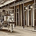 French Quarter Carriage Ride Sepia by Steve Harrington