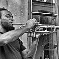 French Quarter Street Musician by Mike Barch