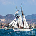 French Shooner Alicante by Pablo Avanzini