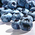 Fresh And Natural Blueberries Close Up On White by Olivier Le Queinec