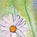 Fresh As A Daisy 1. by Elvira Ingram