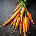 Fresh Carrots by Kati Finell