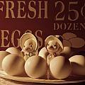 Fresh Eggs by Grace Dillon