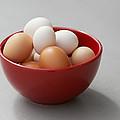 Fresh Farm Eggs by Erika Weber