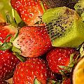 Fresh Fruit Salad by Tomi Junger