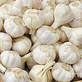 Fresh Garlic Bulbs by Lee Serenethos