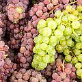 Fresh Grapes On Display by John Trax