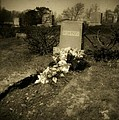 Fresh Grave by Patrick Nadeau