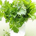 Fresh Herbs In A Glass by Elena Elisseeva