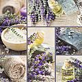 Fresh lavender collage by Mythja  Photography