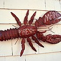 Fresh Maine Lobster Sign Boothbay Harbor Maine by Patricia E Sundik