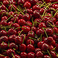 Fresh Red Cherries by Scott Campbell