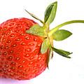 Fresh Red Strawberry by Iris Richardson