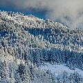 Fresh Snow On The Mountain by Greg Nyquist